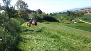Landwirtschaft in Österreich 3 (100 Abonnenten Spezial)