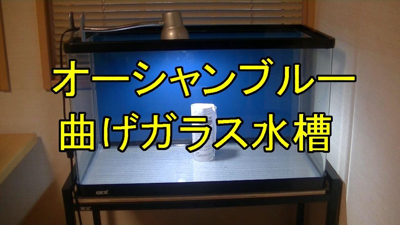 バック スクリーン 方 水槽 貼り 水槽用バックスクリーンの種類と貼り方!おすすめ10選も