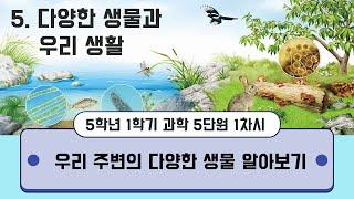 [용툰과 교육영상] 5학년 과학 5.다양한 생물과 우리…