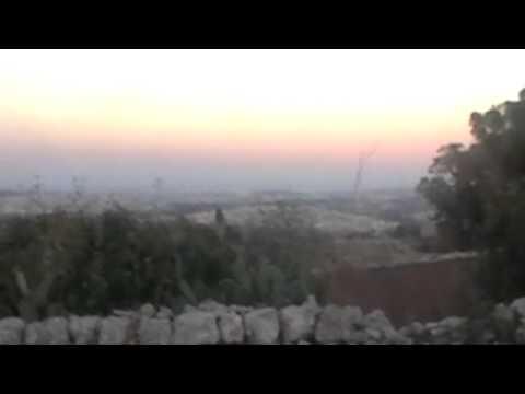 12 confirmed shot in Maltese eagle massacre