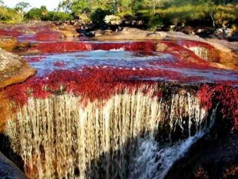 نهر الالوان الخمسه Hqdefault