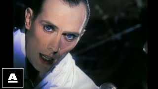 Peter Murphy - Strange Kind Of Love