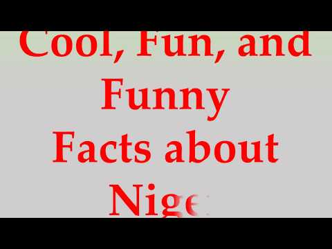 Cool, Fun, and Funny Facts about Niger