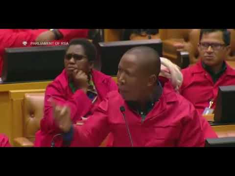 JULIUS MALEMA(ANGRY): THAT'S RUBBISH  (RACISM ) | LEES VS EFF | prod by EuRo b3ats