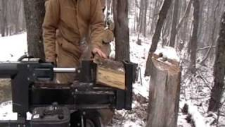 Cutting A Cherry Tree And Splitting Wood