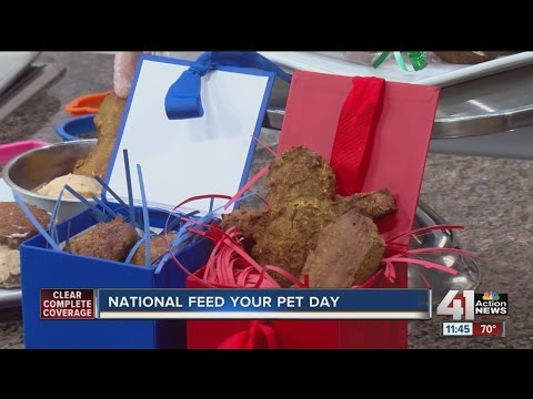 National Feed Your Pet Day