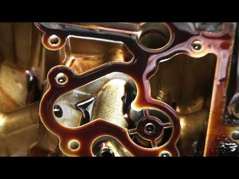 Audi S4 V8 Timing Chain Problem and Repair