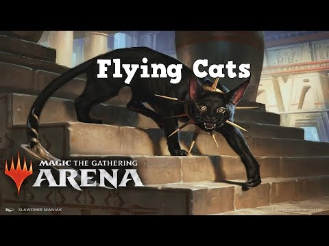 MTG Arena - Attack of the flying cats