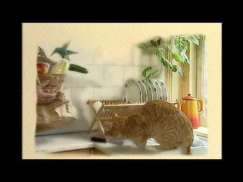 Koffietijd leader/tune 1994 HD