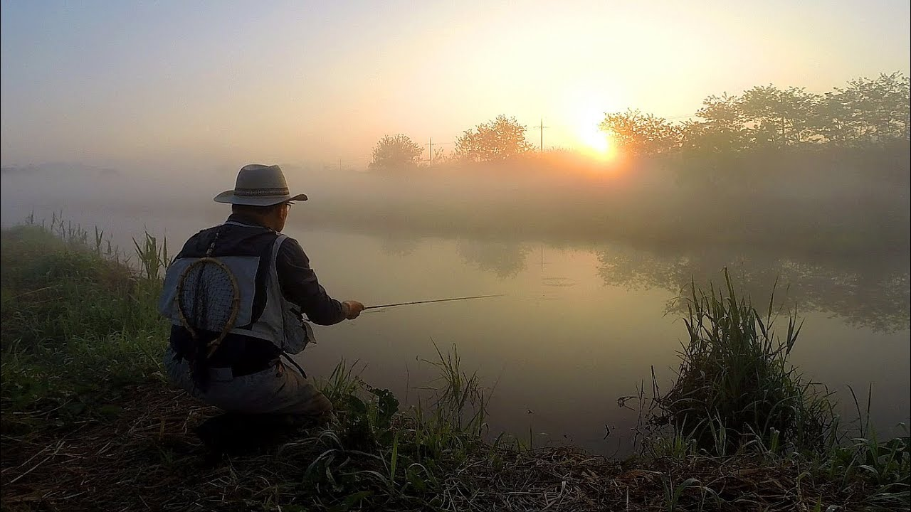 Fly fishing for Carp- Episode 12 (잉어 플라이낚시)