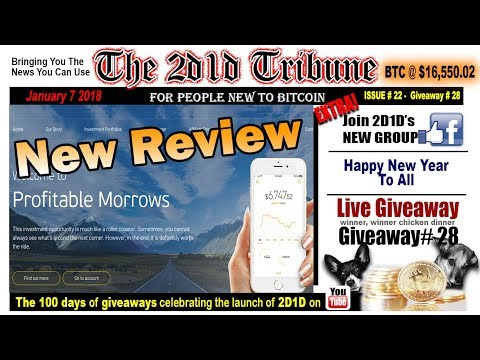 New review of PROFITABLE MORROWS not for the faint of heart