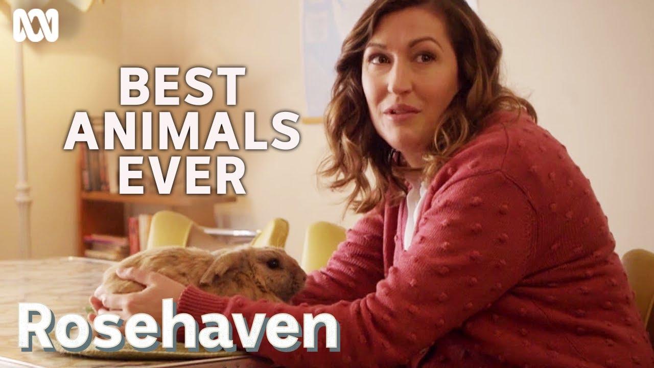 Download Luke McGregor and Celia Pacquola's favourite animals   Rosehaven
