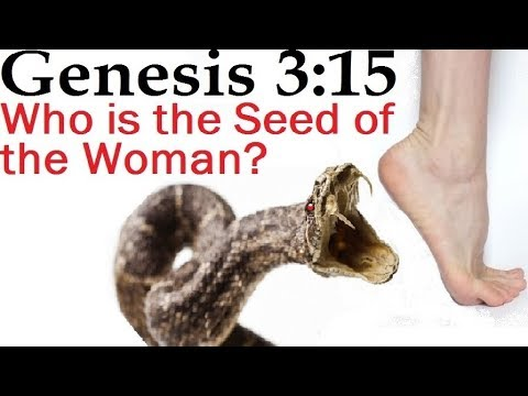 Genesis 3 15 Seed Of The Woman Reply2 One For Israel Maoz