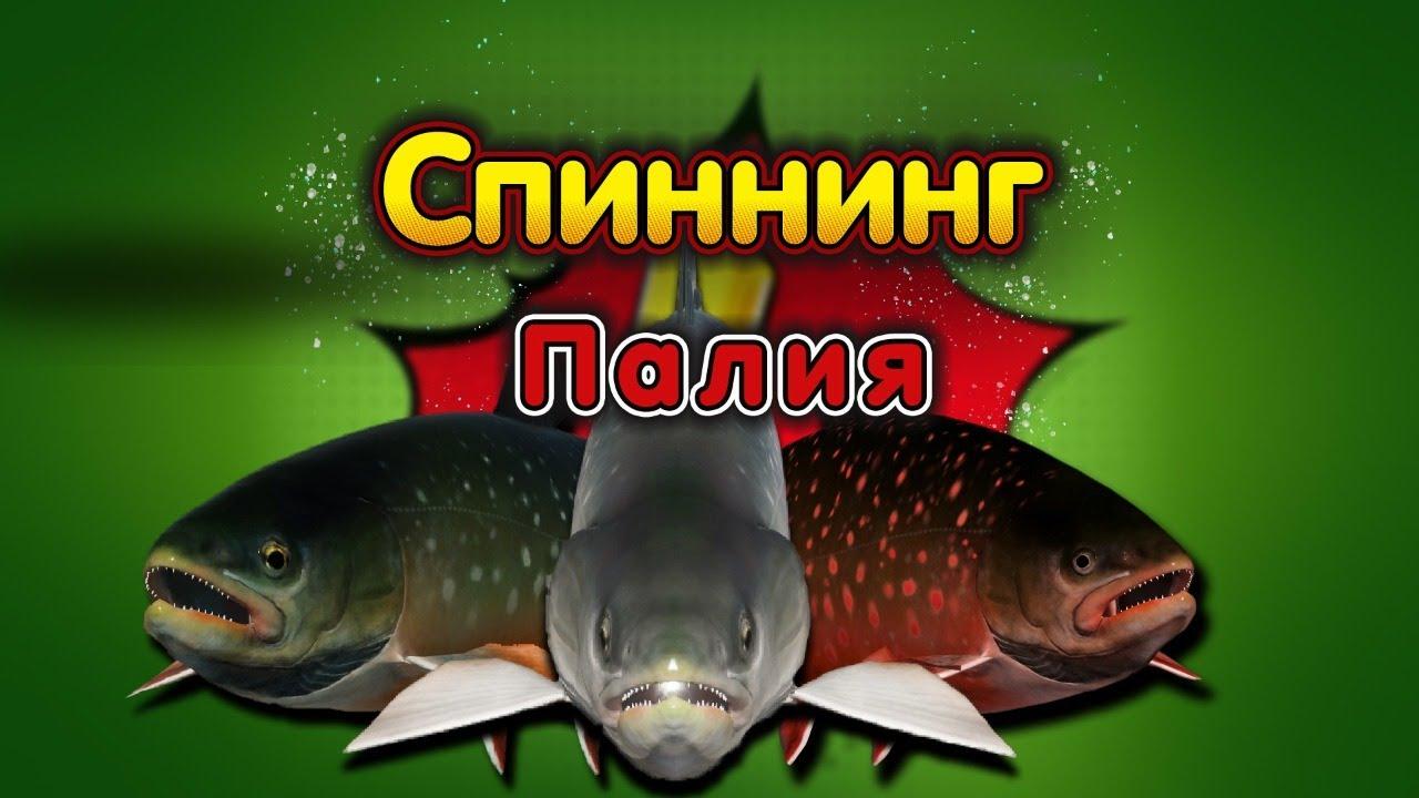 русская рыбалка 3 как ловить на спиннинг