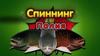 ПАЛИЯ СПИННИНГ level Русская рыбалка 4