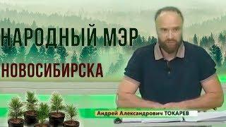 Выбор Сибири - Будущее России 2019 Народный мэр Новосибирска Андрей Токарев. Пора навести порядок!