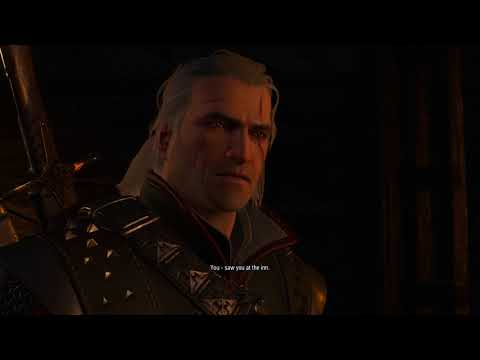 The Witcher 3 2 7 2018 11 24 50 PM