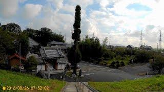渡良瀬川沿い。 2016-08-26.