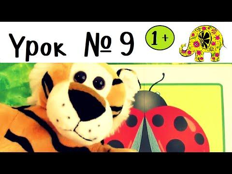 Развивающие игры для малышей. Детские книги. Школа семи гномов. Урок 9. ЦВЕТНЫЕ КАРТИНКИ