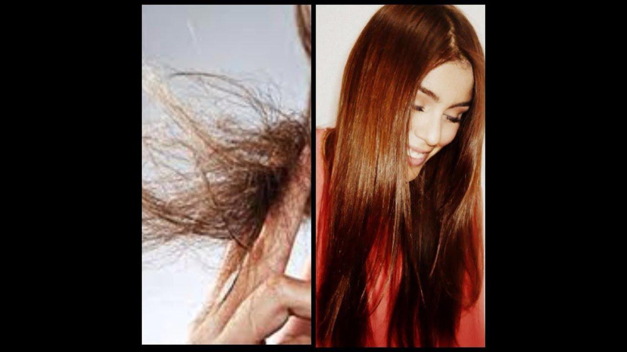 El aceite de la salvia para los cabellos esto
