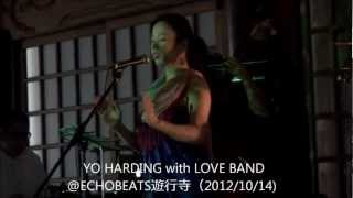 YO HARDING with LOVE BAND@ECHOBEATS遊行寺(2012/10/14)