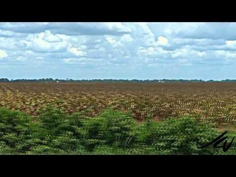 Natchitoches Parish to Texas - YouTube Travel HD