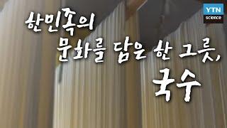 한민족의 문화를 담은 한 그릇, 국수(掬水) / YTN 사이언스