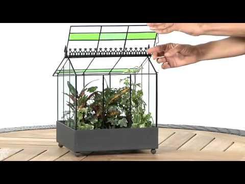 Garden Gifts: Terrariums Make A Great Gardening Gift.