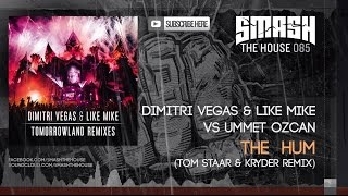 Dimitri Vegas & Like Mike - Tomorrowland Remixes