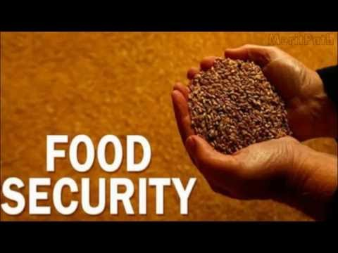 Food security in an urbanising society