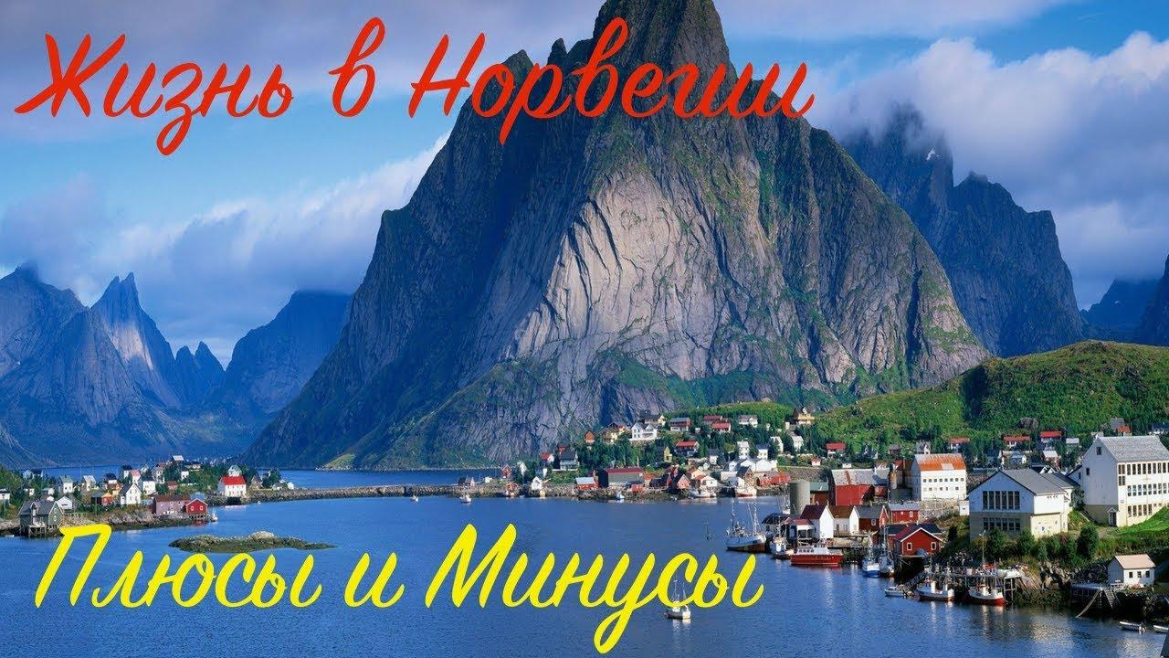 Жизнь в норвегии глазами русских