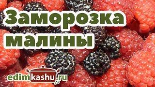 Самый простой способ заморозки малины/ Домашние заготовки на зиму