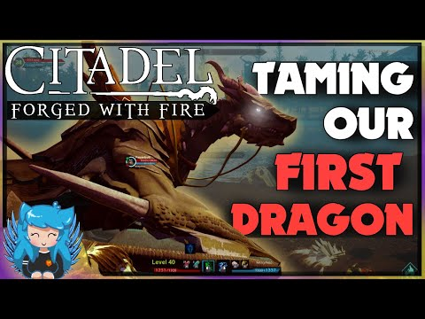 TAMING DRAGONS & UNICORNS! | Citadel Forged with Fire | Ep2