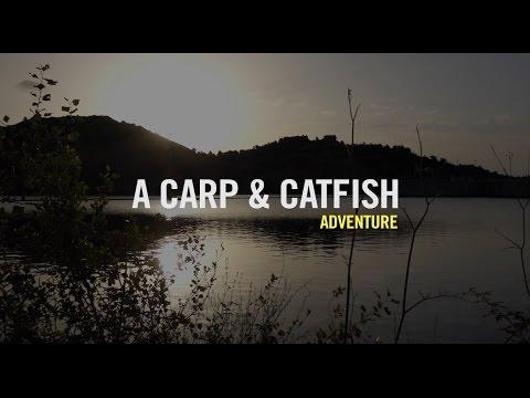 Welsworld TV River Ebro Catfish & Carp Holidays