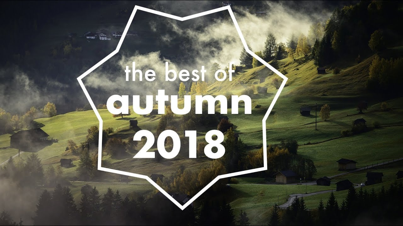 The best NCS of Autumn
