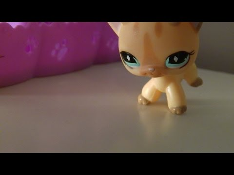 LPS: Your Life, My Life Cassidy's story, 1# saison 1