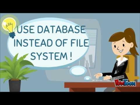 database system vs file system pdf