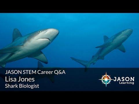 Lisa Jones, Shark Biologist: JASON STEM Role Model Q&A