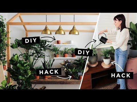 Lazy Girl Plant Hacks