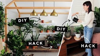 Lazy Girl Plant Hacks