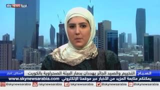 الكويت.. مبادرات فردية وحكومية لإعادة إحياء البيئة الصحراوية