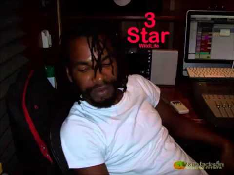 3 Star - Wul Out (Day Off Riddim) - February 2016