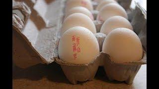 Тонкий признак, который выдает старые яйца
