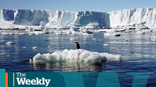 U.S. government sued over climate change | The Weekly with Wendy Mesley