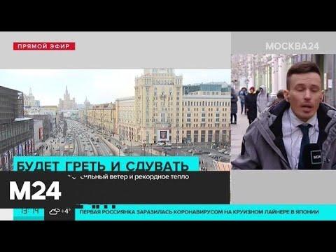 В городе обещают сильный ветер и рекордное тепло - Москва 24