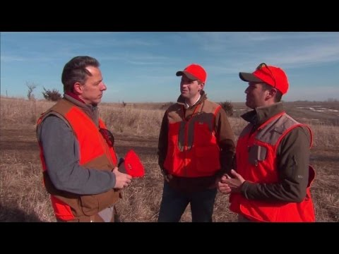 Pheasant hunting with Donald Trump