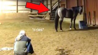 Девушка решила проверить реакцию лошади на плачь, результат превзошел все ожидания!