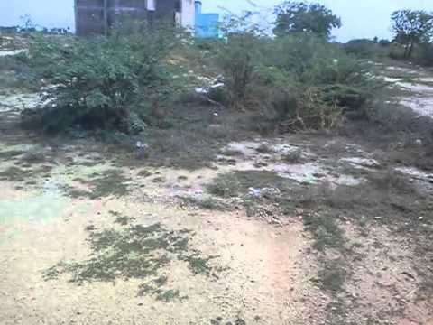My Land ....Distance Madurai to land is 40KM
