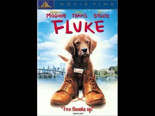 fluke-memories-of-another-life-xempirestateofmusicx
