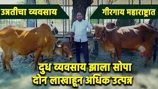गिर गाय स्पेशल   हौशी शेतकरी   Gir Cow Gujrat  